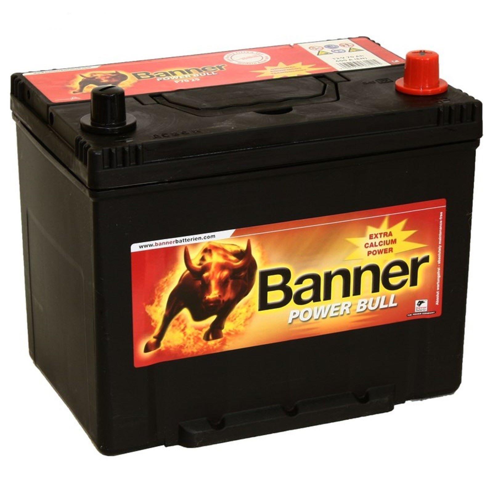 Аккумулятор Banner P70 29, арт. P70 29