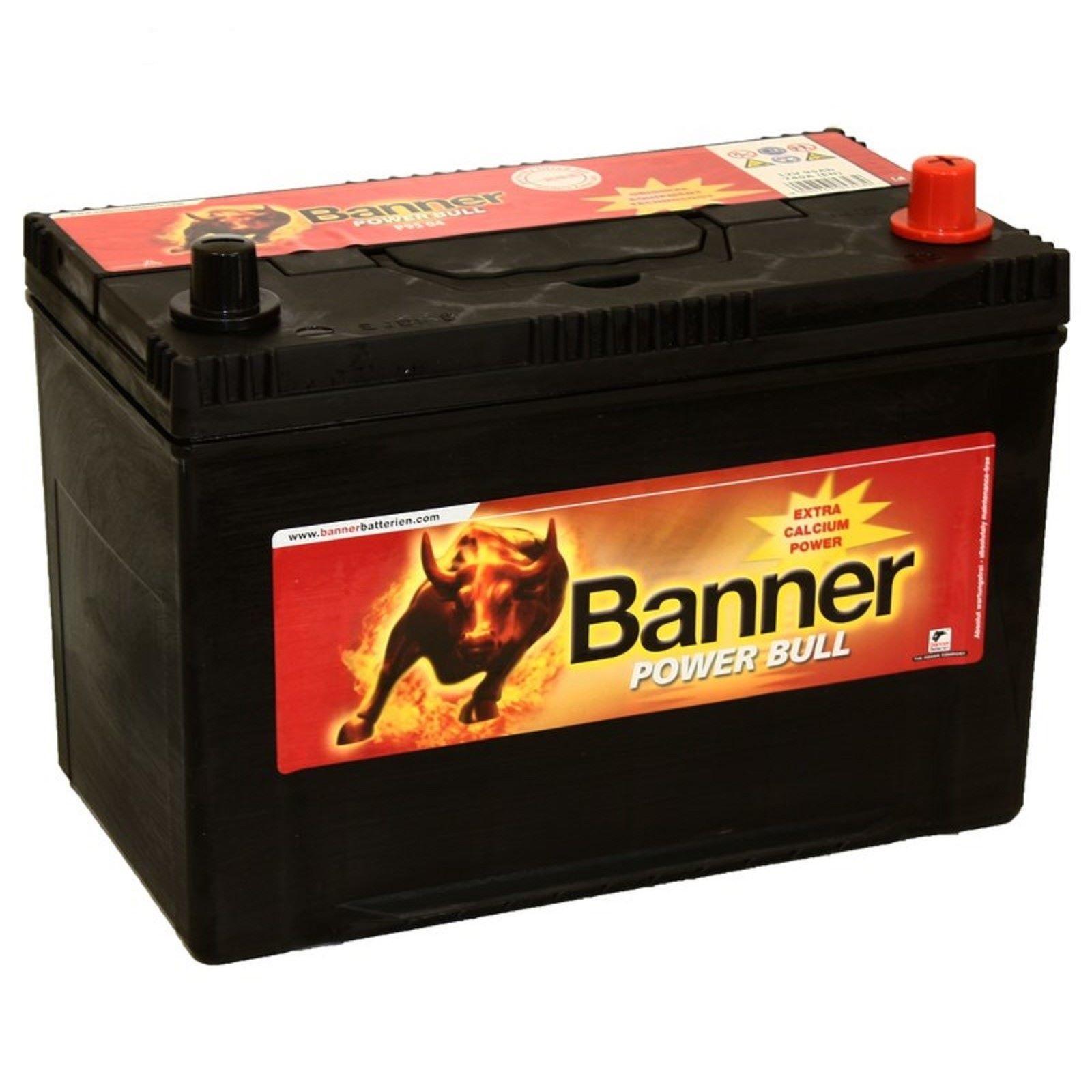 Аккумулятор Banner P95 04, арт. P95 04